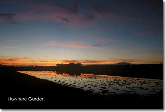 reversal_sunset.jpg